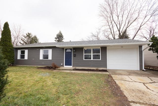 103 Murphy Drive, Romeoville, IL 60446 (MLS #10148917) :: The Wexler Group at Keller Williams Preferred Realty