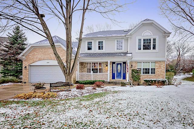 599 S Country Ridge Court, Lake Zurich, IL 60047 (MLS #10150411) :: Helen Oliveri Real Estate