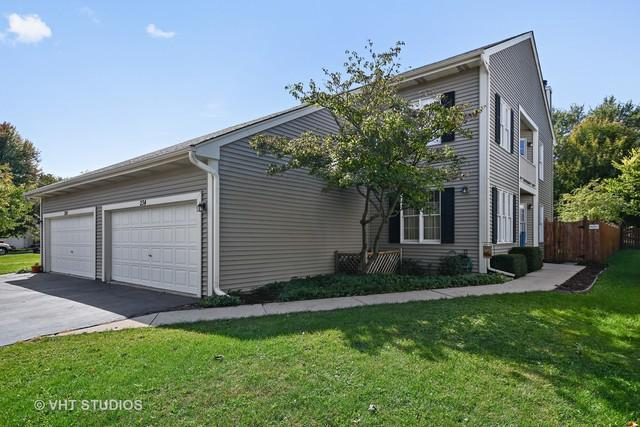 234 S Harrison Street #234, Geneva, IL 60134 (MLS #10150542) :: The Dena Furlow Team - Keller Williams Realty