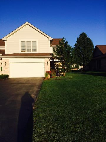 53 Corinth Drive, Tinley Park, IL 60477 (MLS #10152007) :: Century 21 Affiliated