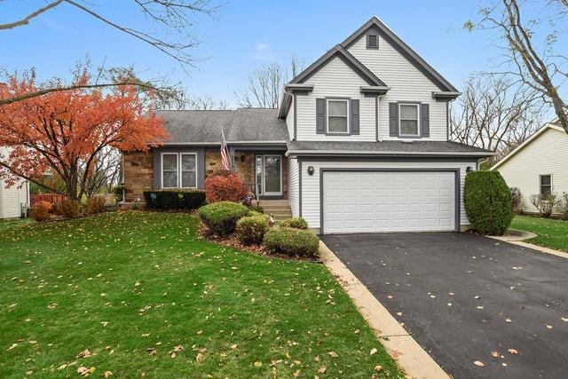 216 Stanton Drive, Buffalo Grove, IL 60089 (MLS #10152585) :: The Wexler Group at Keller Williams Preferred Realty