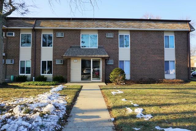 1133 Miller Lane #207, Buffalo Grove, IL 60089 (MLS #10153842) :: Helen Oliveri Real Estate