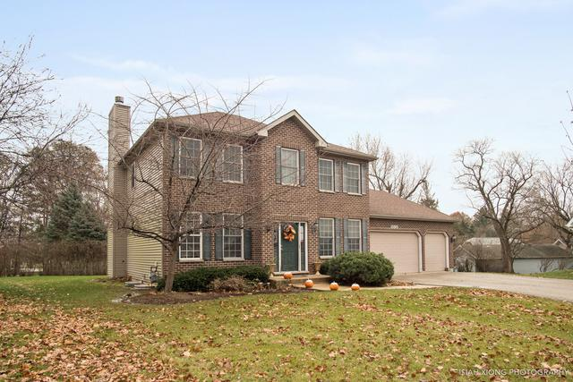 1198 Homestead Drive, Yorkville, IL 60560 (MLS #10154004) :: Helen Oliveri Real Estate