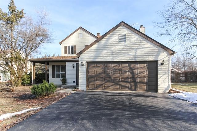 580 Peachtree Lane, Lake Zurich, IL 60047 (MLS #10154677) :: Helen Oliveri Real Estate