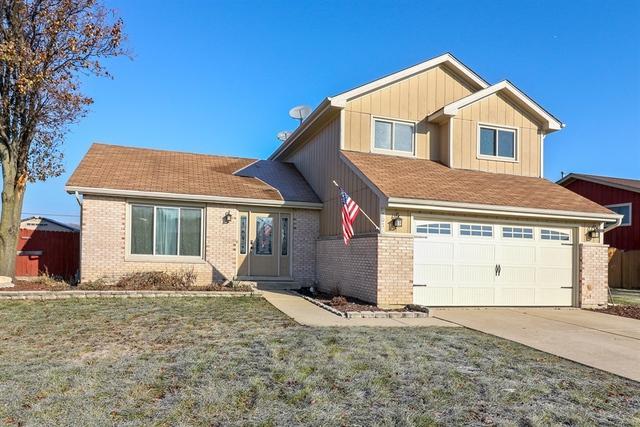 707 Roof Avenue, Romeoville, IL 60446 (MLS #10154681) :: Helen Oliveri Real Estate