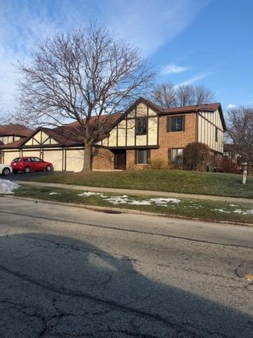 1020 E Nichols Road #1, Palatine, IL 60074 (MLS #10154986) :: Helen Oliveri Real Estate