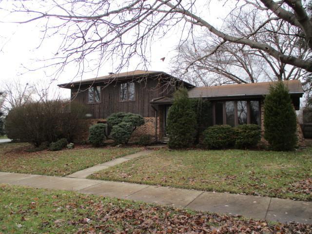 4206 207th Street, Matteson, IL 60443 (MLS #10155297) :: The Mattz Mega Group