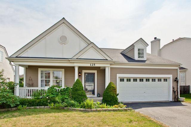 125 W Newbridge Lane, Round Lake, IL 60073 (MLS #10155454) :: BNRealty