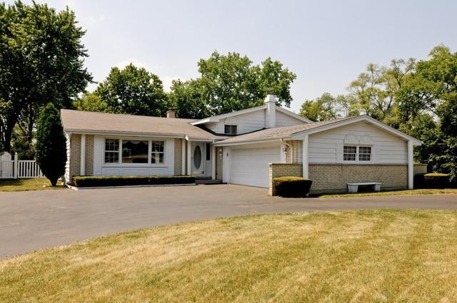 1152 N Perry Drive, Palatine, IL 60067 (MLS #10155752) :: Helen Oliveri Real Estate