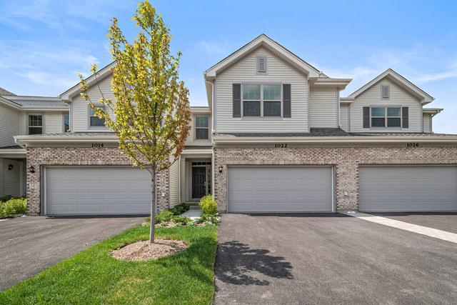 1009 N Auburn Ridge Drive, Palatine, IL 60067 (MLS #10156057) :: Helen Oliveri Real Estate