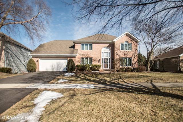 6709 Greene Road, Woodridge, IL 60517 (MLS #10156148) :: Helen Oliveri Real Estate