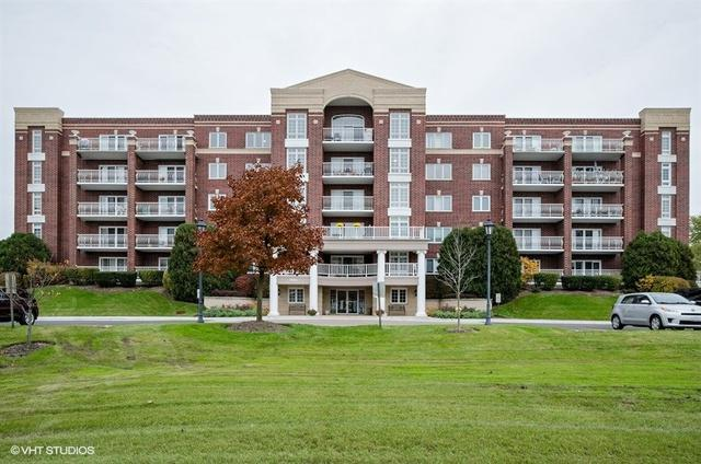 7041 W Touhy Avenue #602, Niles, IL 60714 (MLS #10156193) :: Helen Oliveri Real Estate