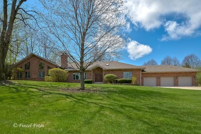 11N333 Williamsburg Drive, Elgin, IL 60124 (MLS #10156260) :: Lewke Partners