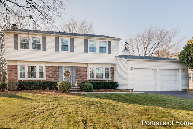 391 Arborgate Lane, Buffalo Grove, IL 60089 (MLS #10156270) :: Lewke Partners