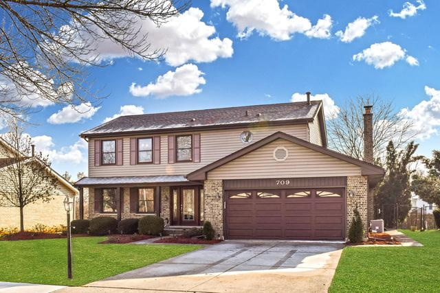 709 Partridge Drive, Schaumburg, IL 60193 (MLS #10156321) :: Touchstone Group