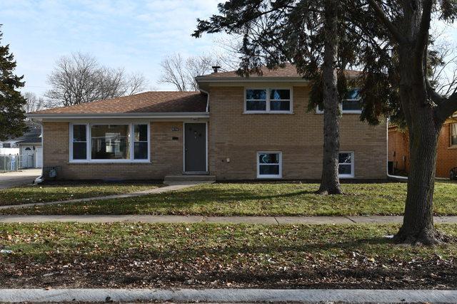1827 Sycamore Street, Des Plaines, IL 60018 (MLS #10156369) :: Helen Oliveri Real Estate