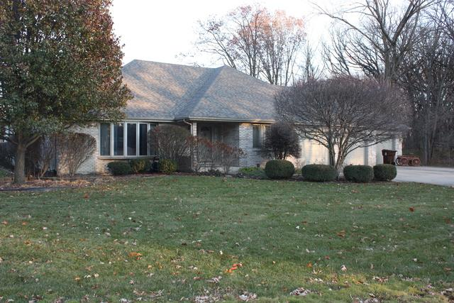20101 S Kohlwood Drive, Mokena, IL 60448 (MLS #10156374) :: Baz Realty Network | Keller Williams Preferred Realty