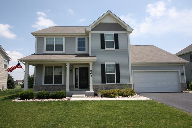 1004 Hudson Drive, Joliet, IL 60431 (MLS #10157722) :: Angela Walker Homes Real Estate Group