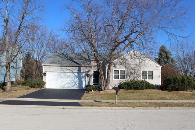1035 Chelsea Lane, Aurora, IL 60504 (MLS #10158324) :: Baz Realty Network | Keller Williams Preferred Realty