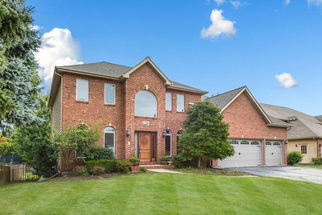 2336 Wilmington Court, Naperville, IL 60565 (MLS #10159199) :: The Wexler Group at Keller Williams Preferred Realty