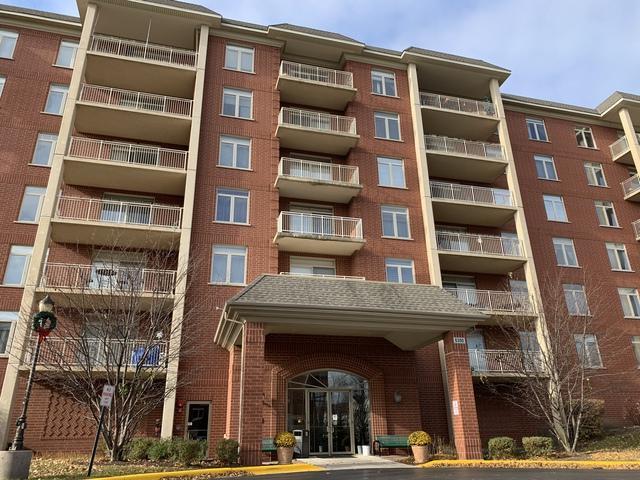 8300 Callie Avenue F210, Morton Grove, IL 60053 (MLS #10159398) :: The Wexler Group at Keller Williams Preferred Realty