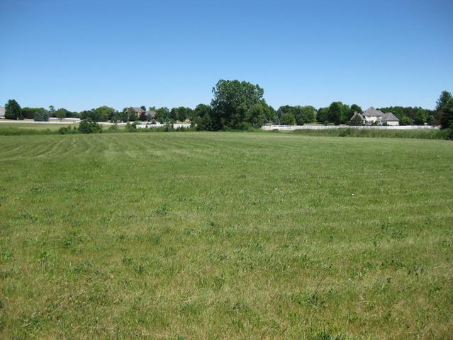 36641 Devon Court, Wadsworth, IL 60083 (MLS #10160215) :: Baz Realty Network   Keller Williams Preferred Realty