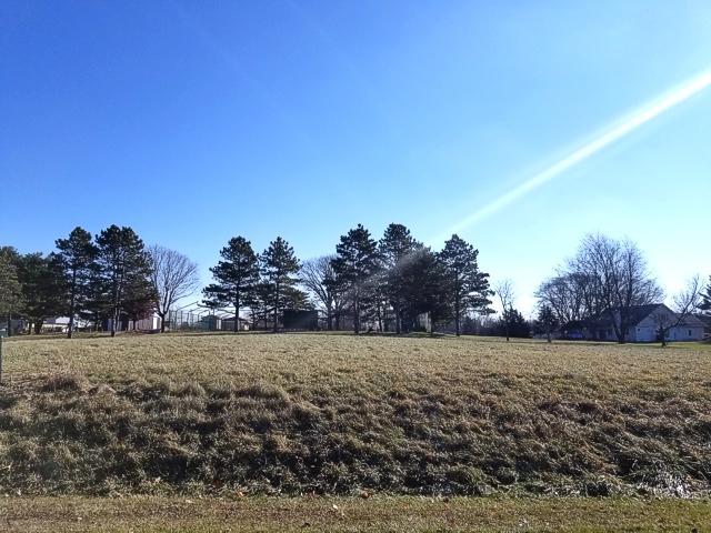 Lot 440 Coldspring Drive, Varna, IL 61375 (MLS #10160394) :: The Wexler Group at Keller Williams Preferred Realty