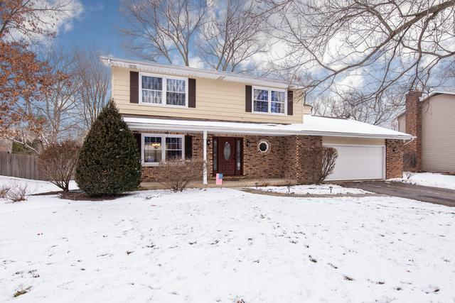 6S430 Bridlespur Drive, Naperville, IL 60540 (MLS #10160466) :: Ani Real Estate