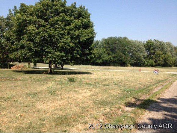 11 School Street, Fisher, IL 61843 (MLS #10161833) :: Ryan Dallas Real Estate