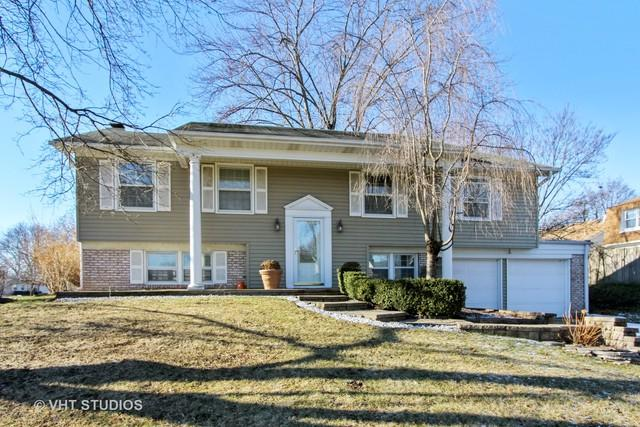 384 Regent Drive, Buffalo Grove, IL 60089 (MLS #10162555) :: The Wexler Group at Keller Williams Preferred Realty