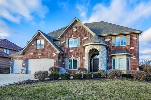 507 Eagle Brook Lane, Naperville, IL 60565 (MLS #10162638) :: The Dena Furlow Team - Keller Williams Realty