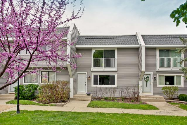 1256 Willow Lane, Gurnee, IL 60031 (MLS #10162650) :: Baz Realty Network | Keller Williams Preferred Realty