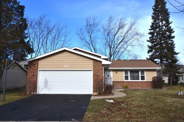 102 Mayer Avenue, Wheeling, IL 60090 (MLS #10162727) :: Baz Realty Network   Keller Williams Preferred Realty