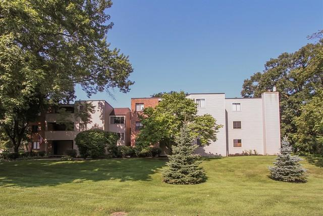 1830 W Highland Avenue D302, Elgin, IL 60123 (MLS #10162858) :: The Wexler Group at Keller Williams Preferred Realty