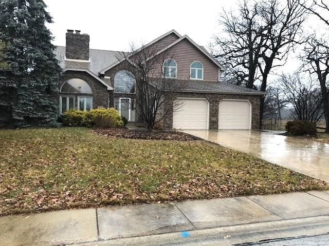 6020 Brittney Lane, Tinley Park, IL 60477 (MLS #10163371) :: The Wexler Group at Keller Williams Preferred Realty
