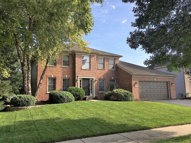 4347 Dairymans Circle, Naperville, IL 60564 (MLS #10164104) :: Baz Realty Network | Keller Williams Preferred Realty