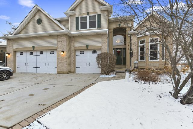 1710 Cambria Lane, Algonquin, IL 60102 (MLS #10164882) :: The Dena Furlow Team - Keller Williams Realty