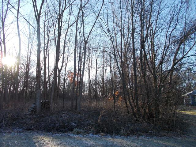 LOT 27 Ferson Court, St. Charles, IL 60175 (MLS #10164970) :: The Wexler Group at Keller Williams Preferred Realty