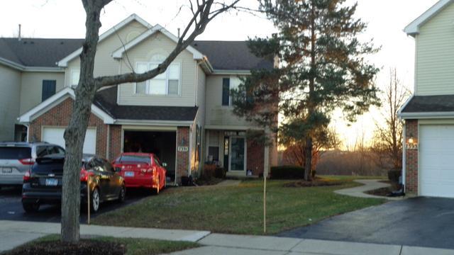 7391 Grandview Court, Carpentersville, IL 60110 (MLS #10165604) :: Baz Realty Network   Keller Williams Preferred Realty