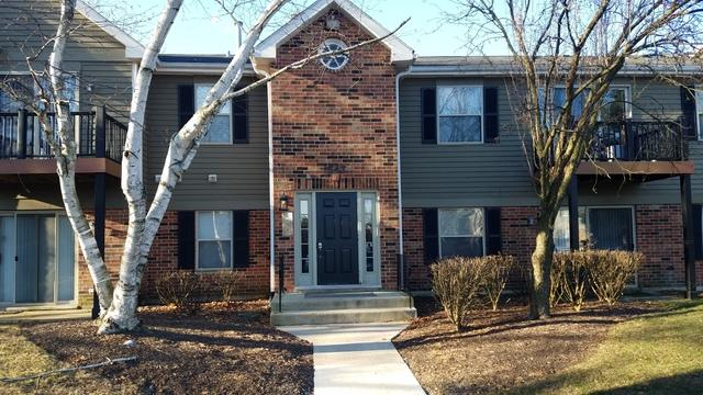 1547 Raymond Drive #201, Naperville, IL 60563 (MLS #10165725) :: Baz Realty Network | Keller Williams Preferred Realty