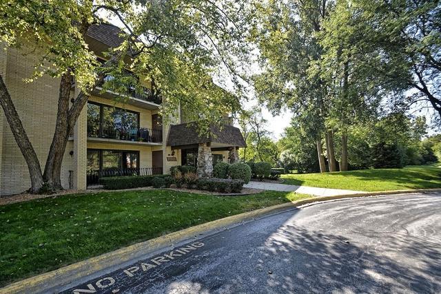 7715 Sussex Creek Drive 2C, Darien, IL 60561 (MLS #10166959) :: Baz Realty Network   Keller Williams Preferred Realty