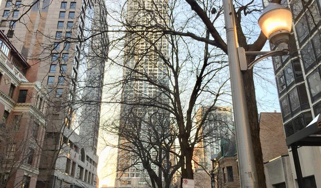 1030 N State Street 9D, Chicago, IL 60610 (MLS #10167175) :: Baz Realty Network   Keller Williams Preferred Realty