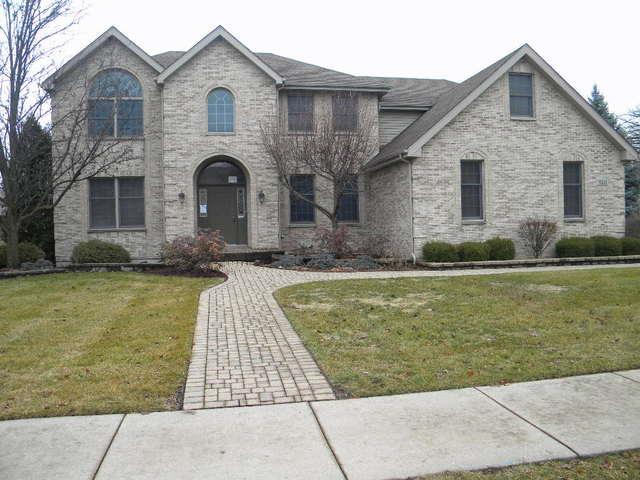 15335 Dan Patch Drive, Plainfield, IL 60544 (MLS #10167236) :: The Wexler Group at Keller Williams Preferred Realty