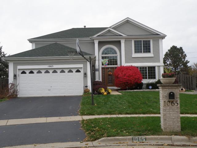 1065 Scarlet Oak Circle, Aurora, IL 60506 (MLS #10167392) :: Baz Realty Network   Keller Williams Preferred Realty