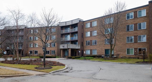 909 E Kenilworth Avenue #408, Palatine, IL 60074 (MLS #10167842) :: Baz Realty Network | Keller Williams Preferred Realty