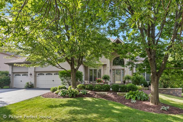 720 De Lasalle Court, Naperville, IL 60565 (MLS #10168363) :: The Wexler Group at Keller Williams Preferred Realty