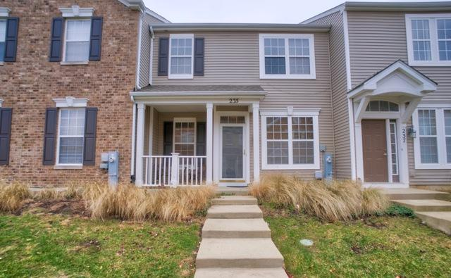 235 Springbrook Trail S, Oswego, IL 60543 (MLS #10168996) :: Baz Realty Network   Keller Williams Preferred Realty