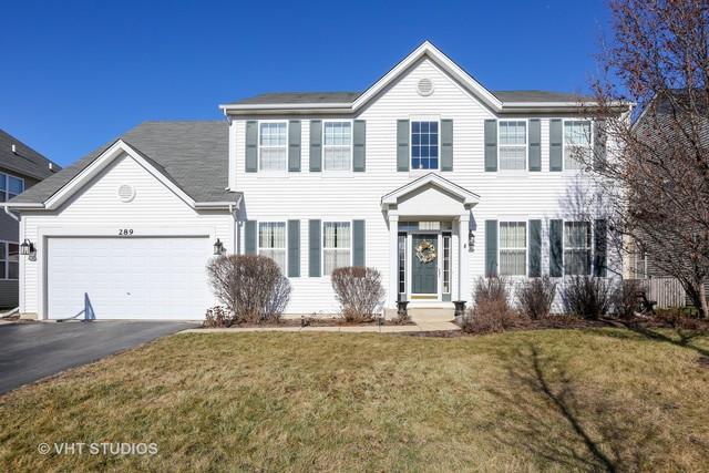 289 Bluegrass Parkway, Oswego, IL 60543 (MLS #10169404) :: Baz Realty Network | Keller Williams Preferred Realty