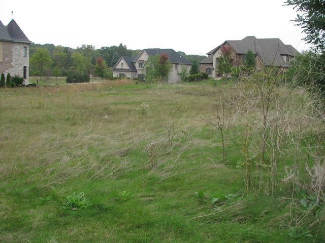 9750 S Jackson Street, Burr Ridge, IL 60527 (MLS #10169419) :: The Wexler Group at Keller Williams Preferred Realty