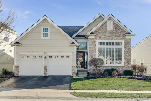 3883 Seigle Drive, Elgin, IL 60124 (MLS #10169432) :: The Wexler Group at Keller Williams Preferred Realty